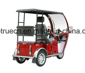 Handicapped Tricycle with One Back Passenger Seat pictures & photos