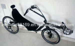 High Quality Recumbent Bicycle for Tourist pictures & photos