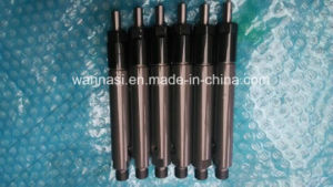 095000-5226 Denso Fuel Pump Injector with High Quality pictures & photos