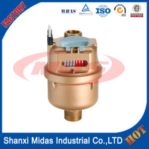 ISO4064 Dn15 ~ Dn20mm Rotary Piston Brass Water Volume Meter pictures & photos