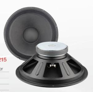 "12"" Professional Woofer Speaker Pas-0212 pictures & photos"