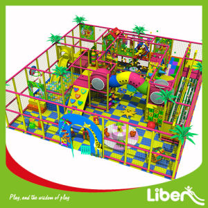 Professional Manufacturer Commercial Indoor Playground with SGS Approved pictures & photos