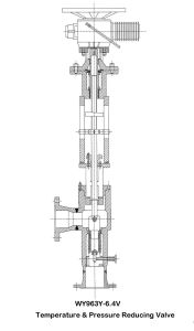 Wy963y-6.4V Temperature & Pressure Reducing Valve