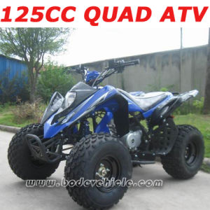 125CC ATV, ATV Quad, Quad Bike (MC-315)
