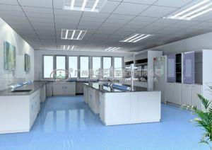 Chemical Laboratory -- Lab Furniture (AUBI-LB-0233)