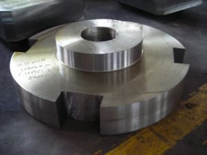Forged Special Steel Ring (A030)