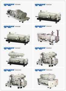 Hokaido Dry Screw Vacuum Pump (RSE4502) pictures & photos