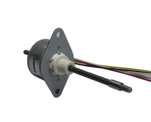 PM Stepper Motor (25BYG48)