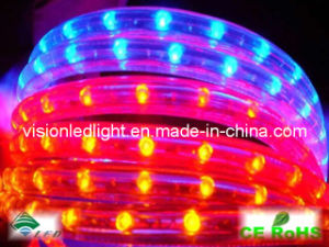 LED Rope Light (VS-2R/B)
