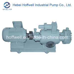 CE Approved 2W. W Fuel Oil Twin Screw Pump pictures & photos