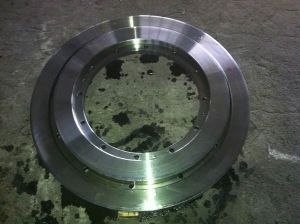 Floating Flanges, Heavy Forging Flanges (FF2045) pictures & photos