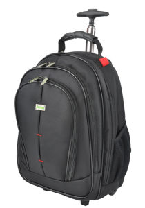 Business Traveling Trolley Bag with Laptop Compartment (MS5052) pictures & photos