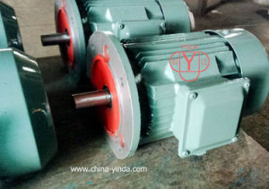 Three Phase AC Motor - IEC- Tefc (IP54) - Cast Iron Frame-Ie2 pictures & photos