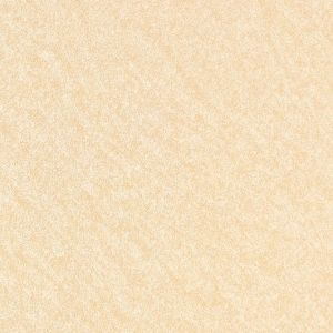 Rustic Floor Tile T6071