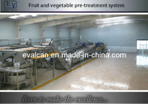 Fruit and Vegetable Processing Machine pictures & photos