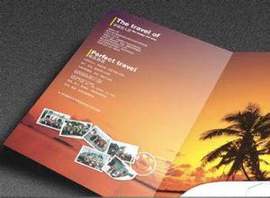 Book Printing, Booklet, Brochure, Intruction Rule, Magazine Printing pictures & photos