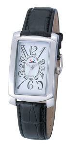 Stainless Steel Watch (CW7030)
