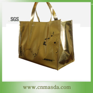 Non Woven Environment-Friendly Shopping Bag (WS13B202)