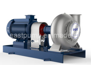 Hot Water Circulation Water Pump with Certificate pictures & photos