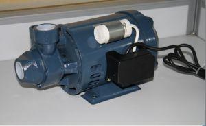 Vortex Pump (PM-45) pictures & photos