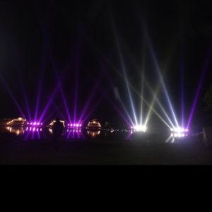 Musical Water Light Fountain-Fly Birds Yc0310