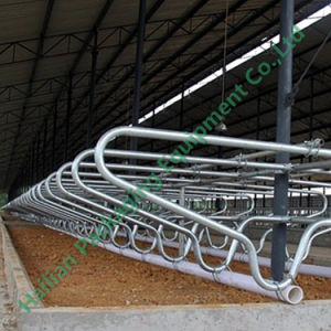 Hot - Galvanized Steel Pipe Head-to-Head Free Stall pictures & photos