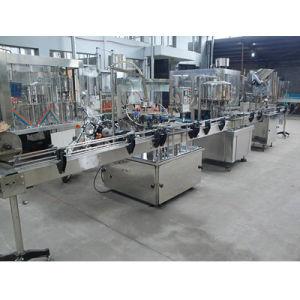 Factory Direct Sale Automatic Fruit Juice Production Machine pictures & photos