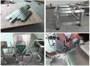 HACCP & FDA Approved Conveyor Belt Type Food Metal Detector pictures & photos