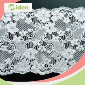 Embroidery Design Bridal Lace Trim Spider Web Pattern Stretch Lace pictures & photos