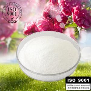 Manufacturer Clopidogrel Hydrogen Sulfate /Fasudil Hydrochloride /Clopidogrel Bisulfate pictures & photos