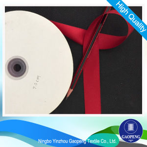 Polyester Ribbon for Clothing/Garment/Shoes/Bag/Case pictures & photos