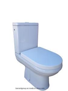 Two Piece Ceramic Toilet Washdown Toilet Water Closet Wc 10130 pictures & photos
