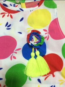 Kid′s Apple Print Dress