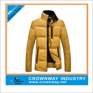 Custom Gold Designer Padded Jacket for Men pictures & photos