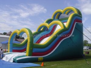 Water Slide Inflatables, Giant Slide, Double Lands Slide, Good Price Inflatable Slide (B4078) pictures & photos