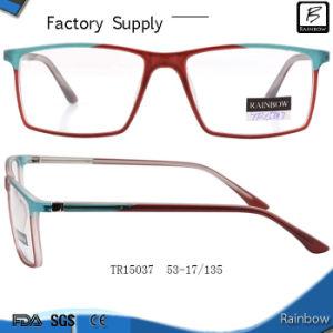 China Light Comfortable Tr90 Eyeglasses Frames Optical (TR15037)