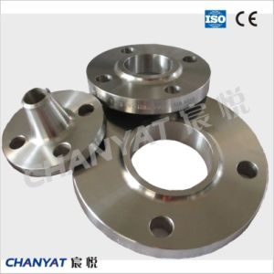 Stainless Steel Weld Neck Flange (F316Ti, F317L, F309H) pictures & photos