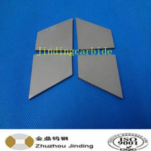 Special Tungsten Carbide Wear Part Replacments pictures & photos