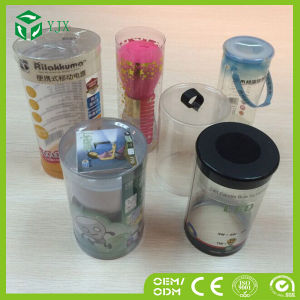 Custom Cosmetic False Eyelashes Makeup Brush Lipstick Plastic Packaging Box pictures & photos