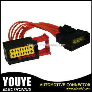 Wiring Harness and Connector for Automotive pictures & photos