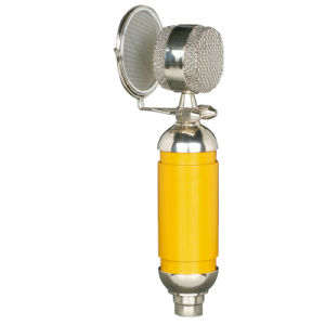 Professional Computer Karaoke Yy Anchor Recording Microphone Capacitor Microphone pictures & photos