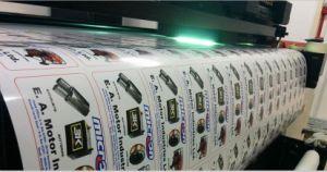 Custom Printing Indoor Advertising Vinyl PVC Flex Banner pictures & photos