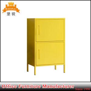 Moisture Vertical 2 Door Cabinet with Stand Feet pictures & photos
