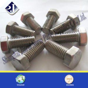 Standard Hex Bolt pictures & photos