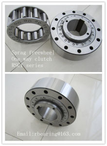 Sprag Type Freewheel Cam Overrunning Backstop Clutch RSCI300