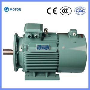 Low Price High Quality 3 Phase Asynchronous OEM Motor pictures & photos