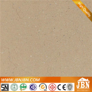 Foshan Hot Sale Rustic Porcelain Tile 600*600mm (JH6308) pictures & photos