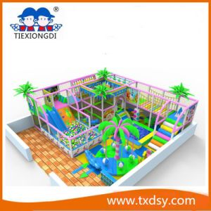 Joyful Indoor Sports Playgroundtxd16-ID085 pictures & photos