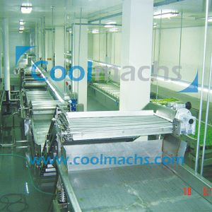 IQF Frozen Line for Vegetables and Fruits pictures & photos