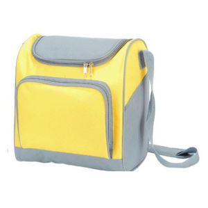 Thermal Insulated Cooler Bag with Shoulder Strap pictures & photos